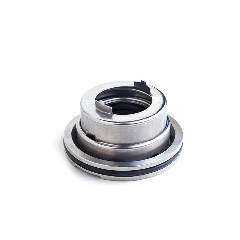 Lepu-Fast Delivery Blackmer Mechanical Seal Blc-35mm 333044 With Competitive-1