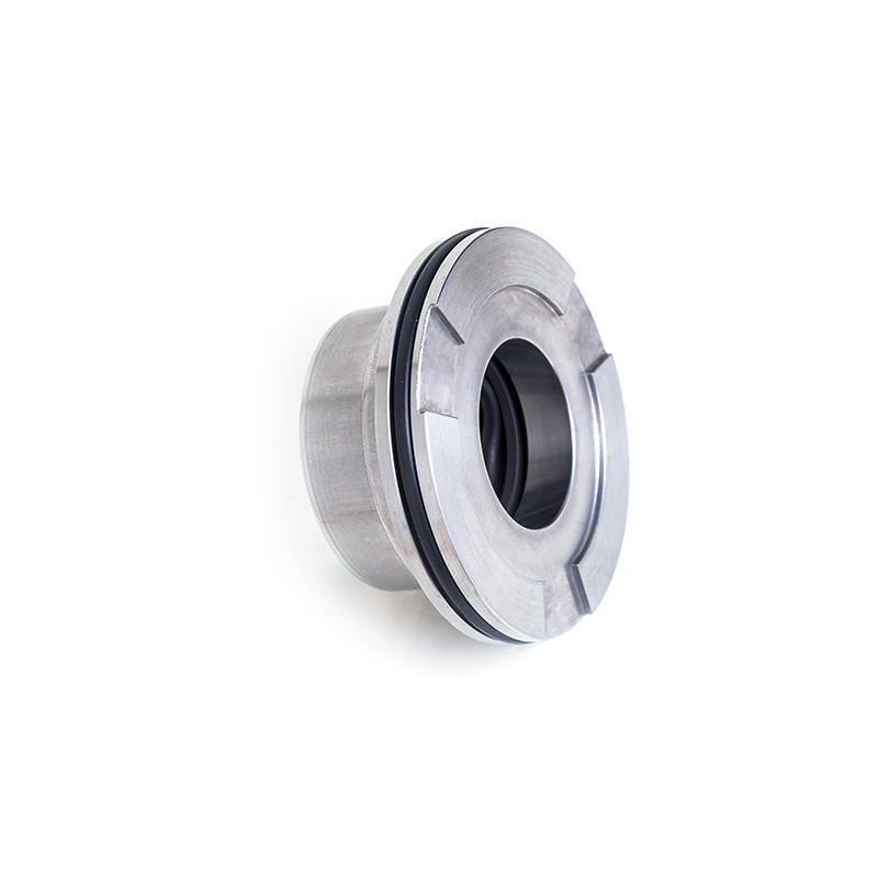 Lepu-Fast Delivery Blackmer Mechanical Seal Blc-35mm 333044 With Competitive-2
