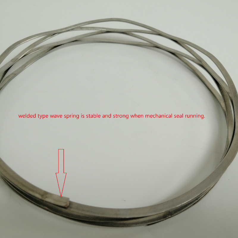 Lepu-News | Why We Need Welded Type Wave Spring For Cartridge Mechanical Seal-1