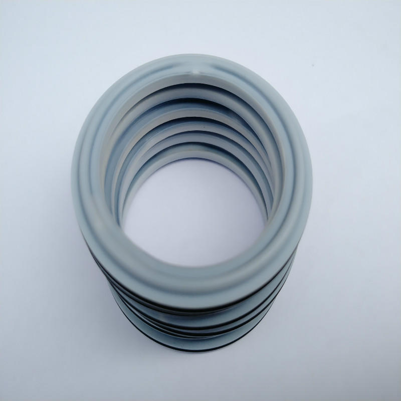 ptfe seal ring for food and beverage pipe using with high resistance and temperature