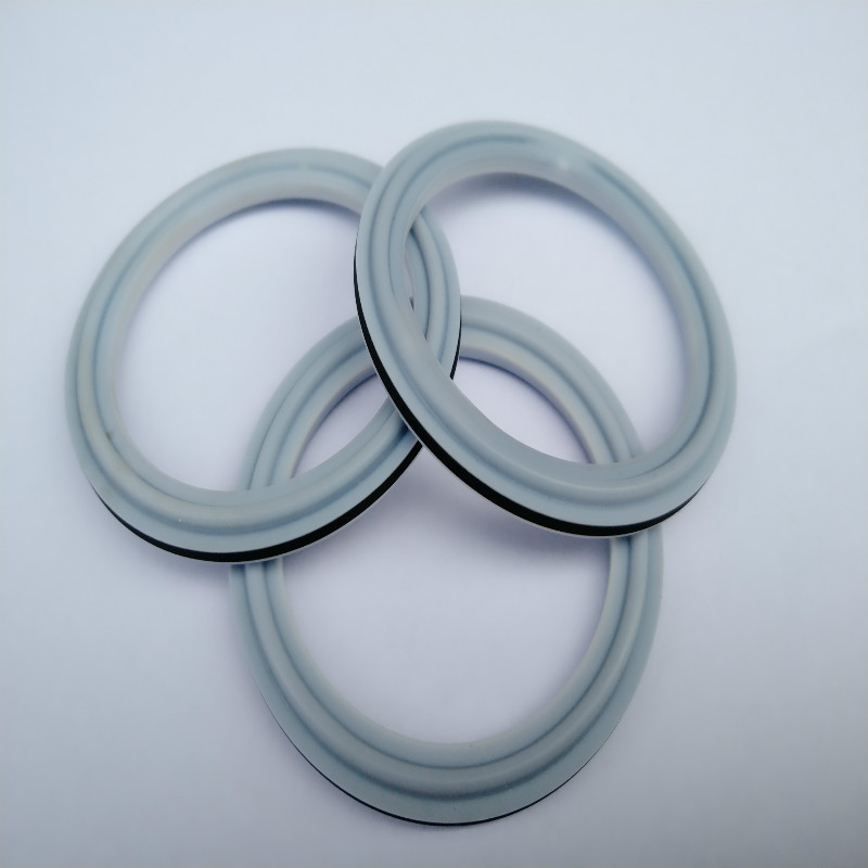Lepu-Ptfe Seal Ring For Food And Beverage Pipe Using-2